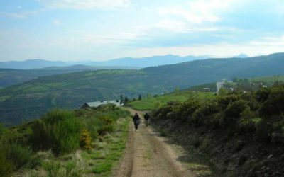 Camino Itinerary