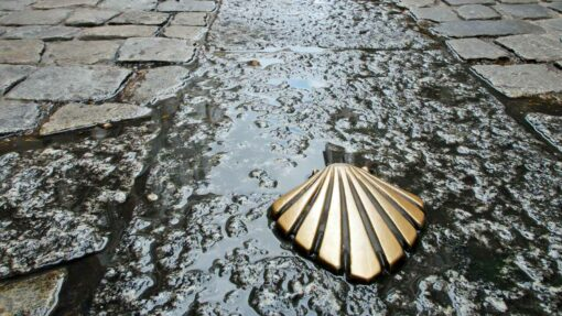 Scallop shell Camino marker leading to The Cathedral de Santiago de Compostela