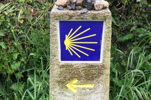 El Camino -Yellow shell and arrow marker