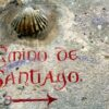 Camino Shell with Camino Graffitti