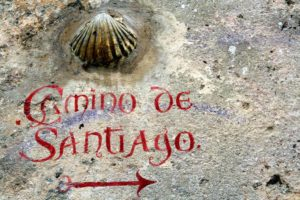 Camino Shell with Camino Graffitti