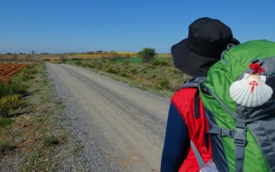 Camino Fun Facts