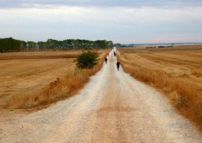 El Camino de Santiago The Way of St. James