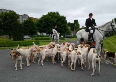 Horse and hound welcome at Dromoland Castle Hotel
