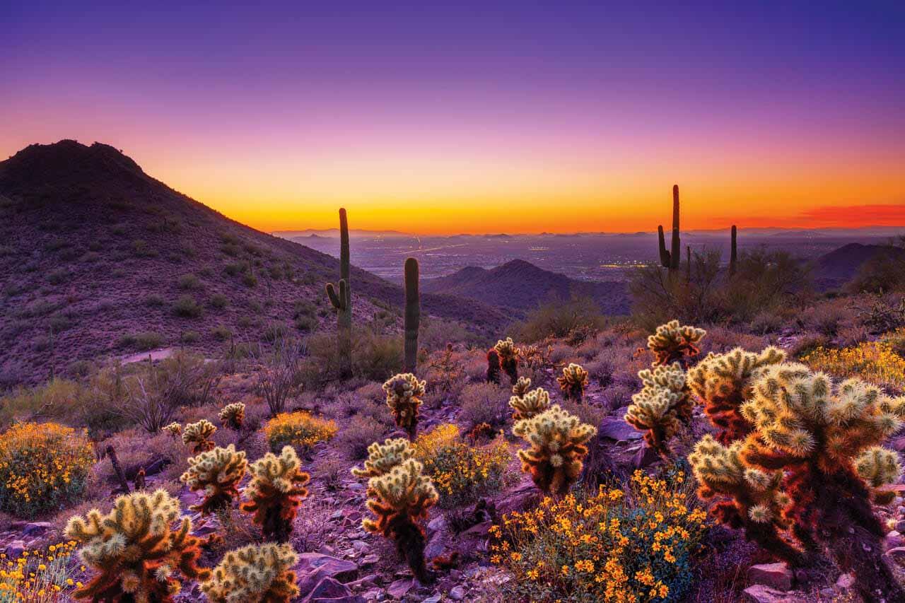 McDowell Sonoran Preserve, Arizona