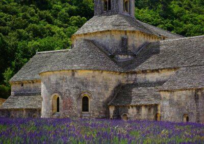 Abbaye de Senanque, Avignon