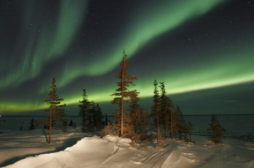 Northern Lights, Churchill