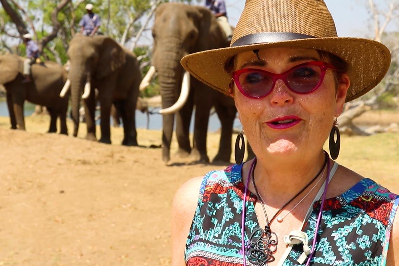 South Africa Laurelea Elephants