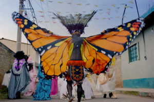 Monarchs arrive in Michoacán on The day of the Dead